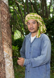 Asian man cutting rubber tree Royalty Free Stock Images
