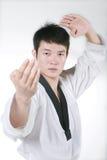 Asian man playing  taekwondo Stock Images