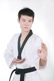 Asian man playing  taekwondo Royalty Free Stock Photography