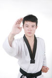 Asian man is playing with taekwondo Royalty Free Stock Photos