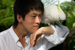 Asian man portrait with parrot Royalty Free Stock Image