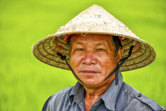 Asian man with conical Royalty Free Stock Image