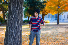 Asian Man Stands under a Ginkgo Tree in Autumn Royalty Free Stock Photography