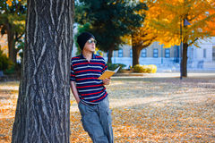 Asian Man Stands under a Ginkgo Tree in Autumn Stock Photography