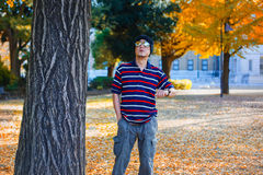 Asian Man Stands under a Yellow Ginkgo Tree in Autumn Royalty Free Stock Photo
