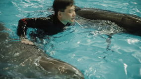 Asian man swim with dolphin stock video