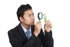 Asian man use magnifying glass observe leave royalty free stock image