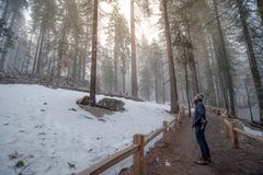 Asian man walking in the forest while snowing stock photos