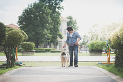 Asian man walking with a siberian husky don. In the park Royalty Free Stock Photo