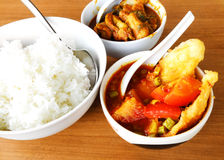 Asian meal, fish & vegetable curry Royalty Free Stock Photo
