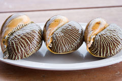 Asian meal-large mollusks Royalty Free Stock Photography