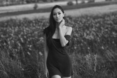 Asian model in  field Royalty Free Stock Photography