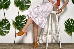 Asian model in studio Royalty Free Stock Image