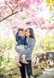 Asian mother holding baby in  cherry blossom Stock Image