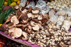 Asian mushrooms Stock Photos