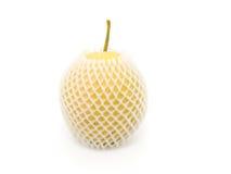 Asian nashi pears. Stock Photography