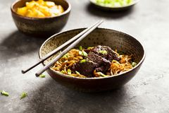 Asian noodle dish. With beef and green onion royalty free stock photos