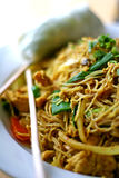 Asian Noodles. Asain noodles and spring roll on serving plate Stock Image