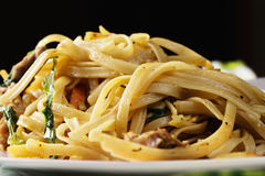 Asian noodles closeup Royalty Free Stock Images