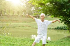 Asian old man practicing qigong in the park. Portrait of healthy white hair Asian senior man practicing wushu at outdoor park in morning Royalty Free Stock Photo