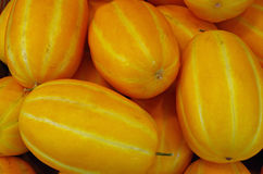 Asian orange yellow striped melons royalty free stock image