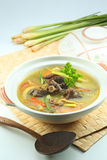 Asian Ox Tail Soup Stock Image
