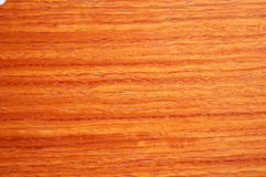 Asian padauk wood Royalty Free Stock Photography
