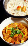 Asian Paneer curry and jeera rice Stock Image