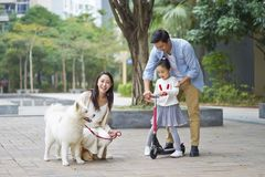 Asian parents & daughter playing scooter while walking dog in garden royalty free stock image