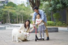 Asian parents & daughter playing scooter while walking dog in garden. Chinese parents & daughter playing scooter while walking dog in garden Stock Images