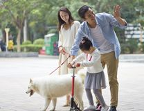 Asian parents & daughter playing scooter while walking dog in garden royalty free stock photography