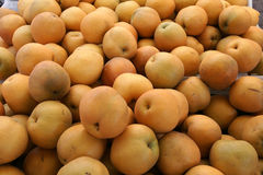 Asian pear, Chinese pear Royalty Free Stock Photos