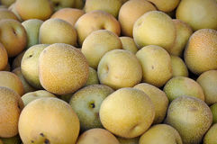Asian Pears Royalty Free Stock Image