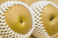 Asian pears in shipping net Royalty Free Stock Image