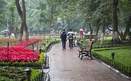 Asian people walking in the rain on a floral park Royalty Free Stock Photography