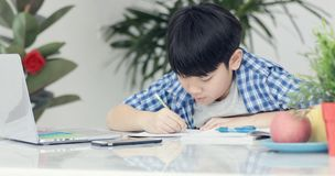 Asian preteens doing your homework with tablet. Asian preteens doing your homework with tablet computer with serious face Royalty Free Stock Photography