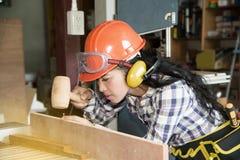 Asian pretty female carpenter using wood hammer. Stock Images