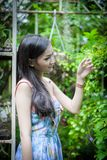 Asian pretty girl has relaxing with happy and smiling at Little Tree Garden cafe, Nakhon Pathom province, Thailand in the morning. Background beautiful beauty royalty free stock image
