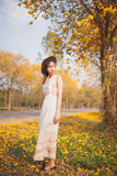 Asian pretty girl surrounded by the yellow flowers in summer.  Stock Image