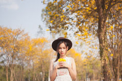 Asian pretty girl surrounded by the yellow flowers in summer.  Stock Photos