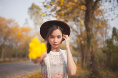 Asian pretty girl surrounded by the yellow flowers in summer.  Stock Images