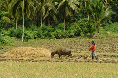 Asian primitive farming Royalty Free Stock Images