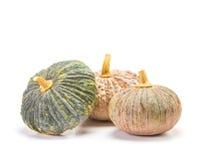 Asian pumpkin on white background Stock Image