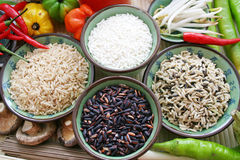Asian rice Royalty Free Stock Photography