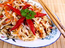 Asian rice noodle with chicken meat and chili star Royalty Free Stock Images