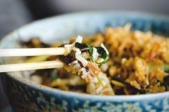 Asian rice with pork, Mu-err mushrooms, napa cabbage, pickled bamboo shoots, spinach, Teriyaki, sweet chili sauce, onion Stock Photography