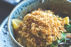 Asian rice with pork, Mu-err mushrooms, napa cabbage, pickled bamboo shoots, spinach, Teriyaki, sweet chili sauce, onion Royalty Free Stock Photography