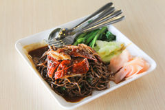 Asian Roast Duck black Noodle Royalty Free Stock Image