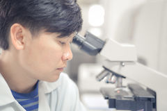 Asian scientist working in laboratory. Royalty Free Stock Image