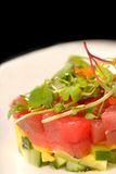 Asian seafood tartare with tuna and mango Royalty Free Stock Photos